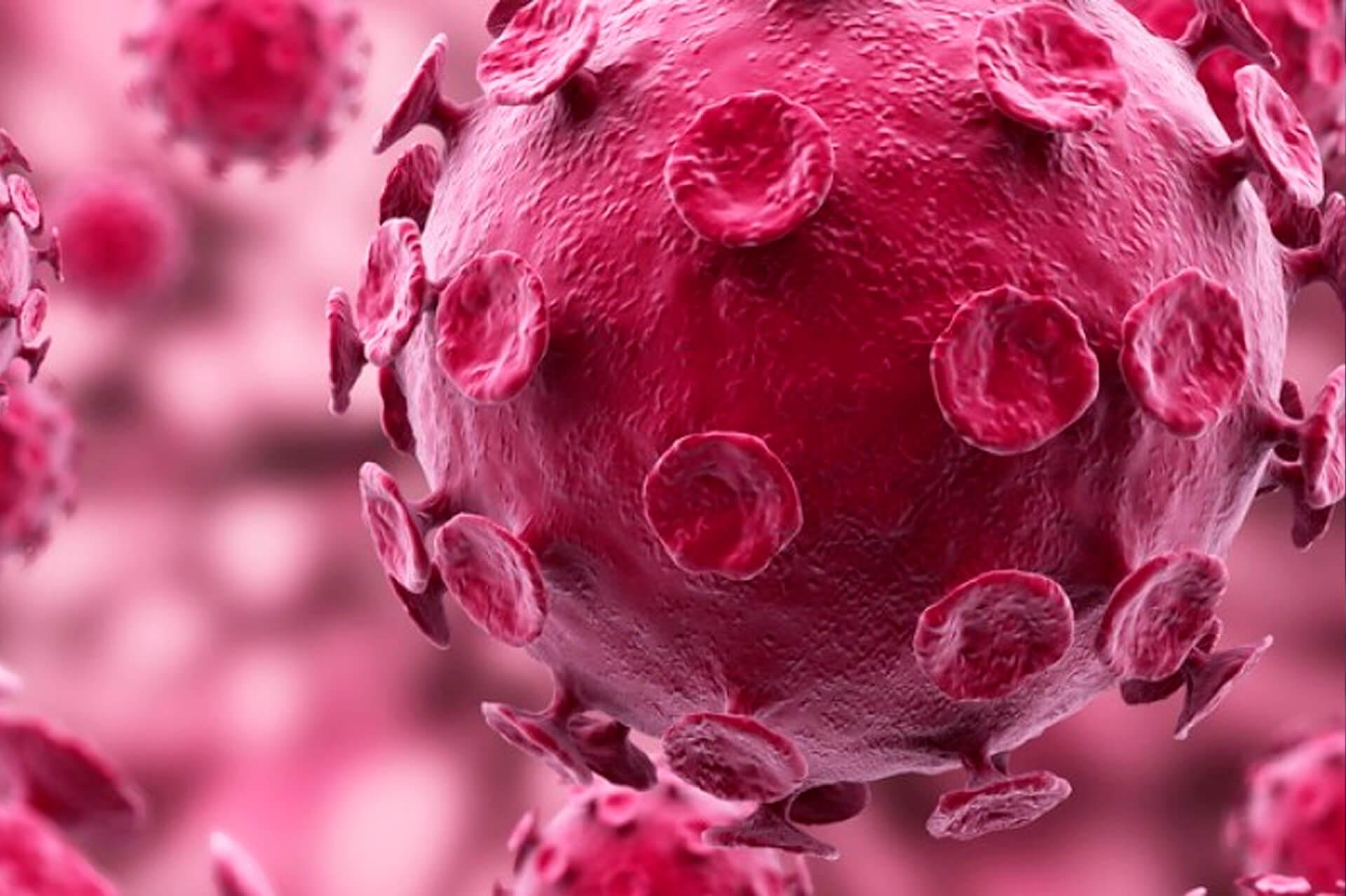 Oncohematología